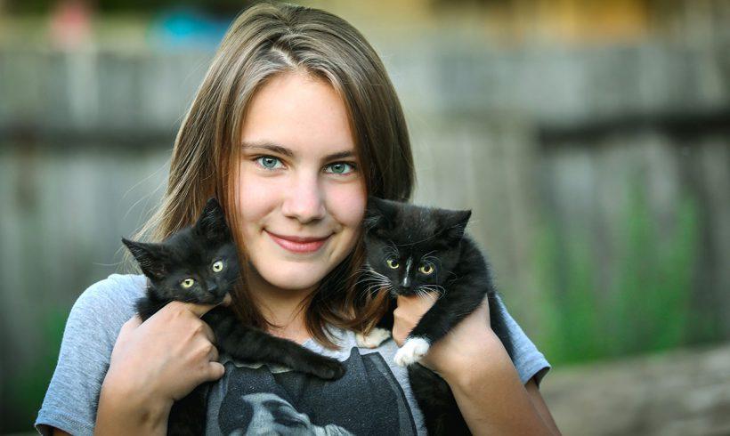 Zalecenia i porady dla nowych opiekunów kotów